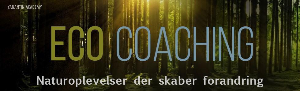 ECO Coaching 980