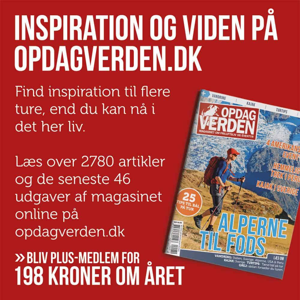 Inspiration-og-viden