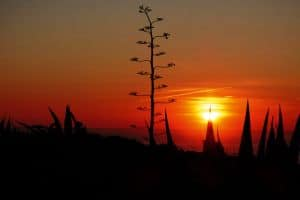 Fishermans Trail  4