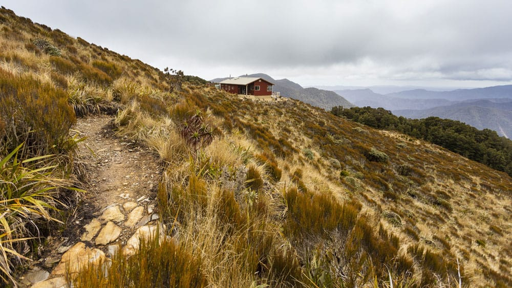 PaparoaMoonlight Tops Hut Paparoa 2